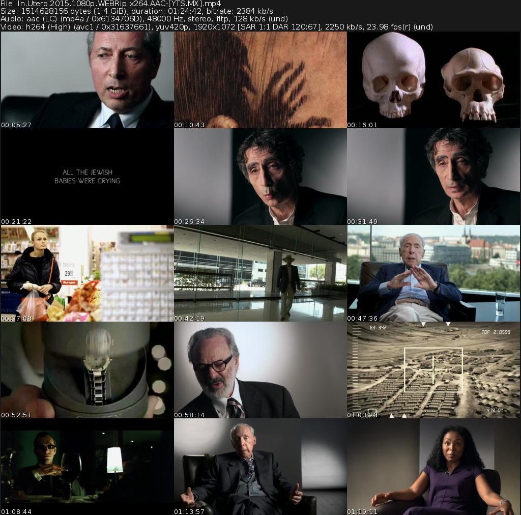 In utero Srebrenica Movie