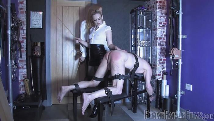 Goddess Dommelia, Mistress Petite - WORTHY OF THE CANE (FullHD 1080p) - FEMMEFATALEFILMS - [2020]